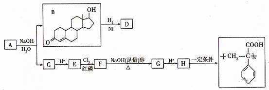 苯丙酸诺龙是一种兴奋剂